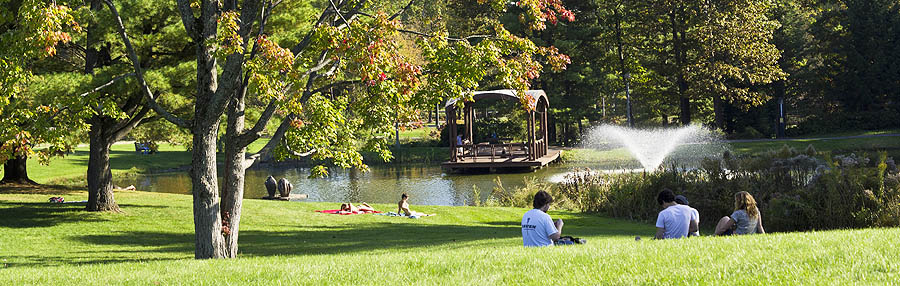 Haupt Pond on a summer day