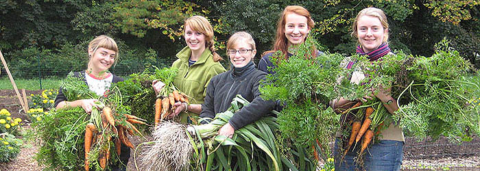 The Student Garden supplies produce to the Dining Hall