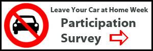Participation survey